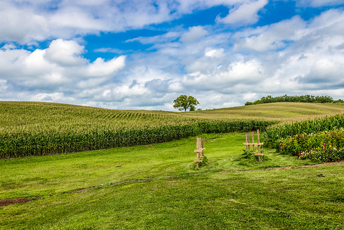 trees field weather clouds day cloudy kansascity crops weston mostlycloudy farmershouse