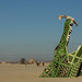 73 A Man In A Giraffe Costume Climbs On The Big Al Alligator by Brennan Steele | New Orleans, LA Burning Man 2014 by Duncan Rawlinson - Duncan.co - @thelastminute