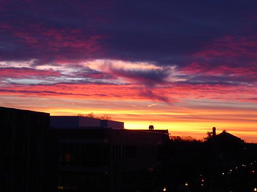 wheatonil nature sunset