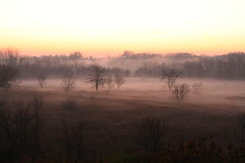 fog shrowded morninsunrise fogography sunrisesunset ohio maumee