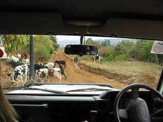 Traffic Jam in Tanzania