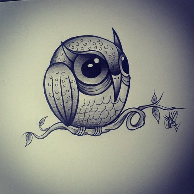 Estudos Da Corujinha De Amanha Coruja Owl Passaro Flickr