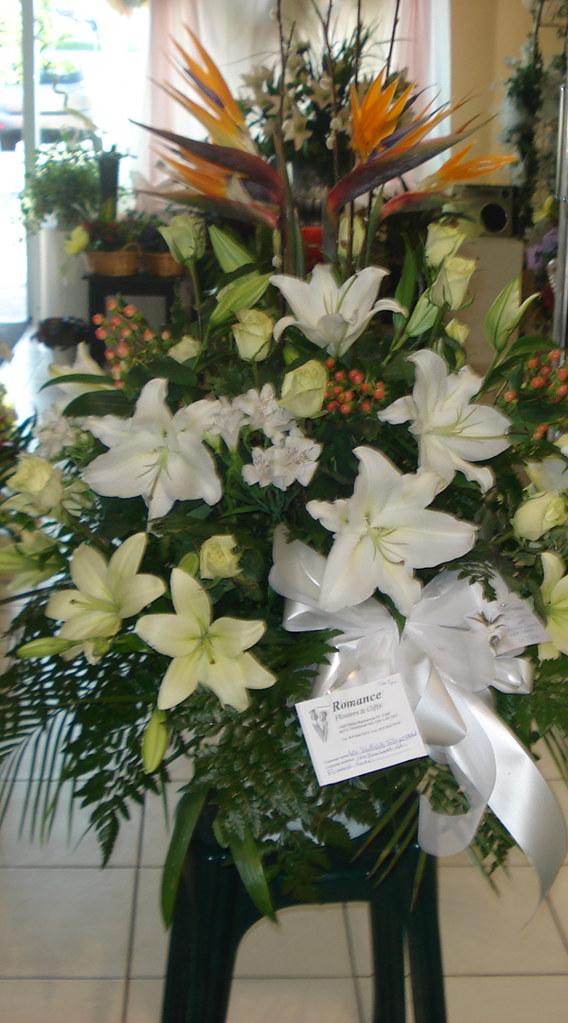 Farah Florist W-A-30    $180-200