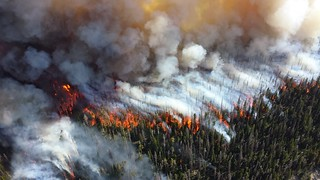 Wildfire | by NPS Climate Change Response
