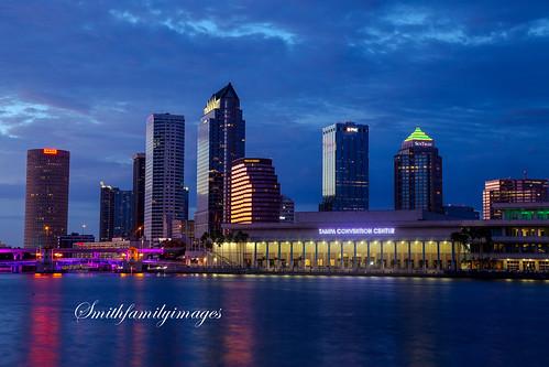 city color water skyline night tampa florida