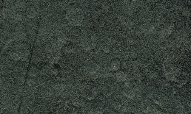 Raindrop imprints on argillite (Rhode Island Coal Measures, Pennsylvanian; Attleboro, Massachusetts, USA) 2