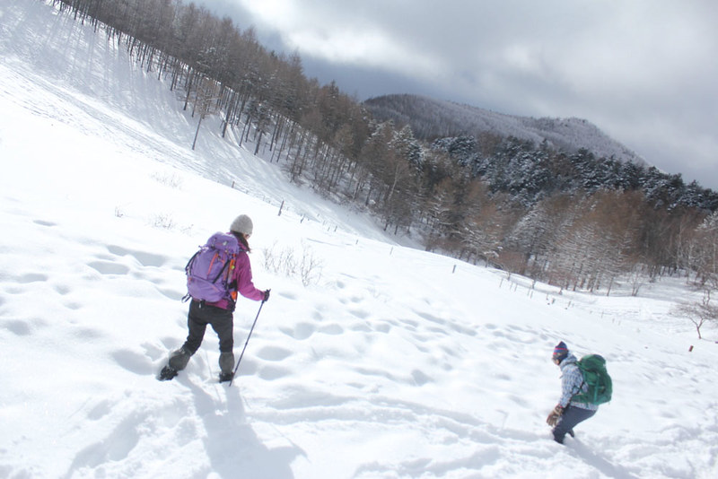 2014-01-19_00074_入笠山