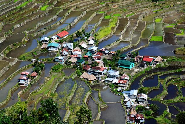 Riziéres de Batad Philippines _6622