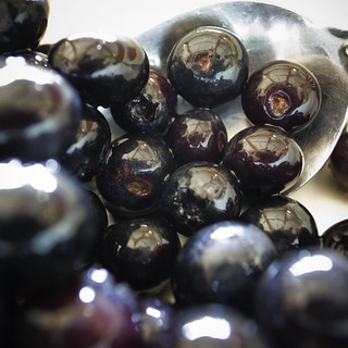 Fresh Picked Farm Blueberries by the Bowlfull | by jacob schere [in the 03 strategically planning]