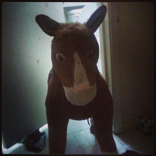 "A #latergram captured 9/26 when an acmekid was home sick.  This pony served as a ""bathroom closed"" notification. #cleanuponisle4 