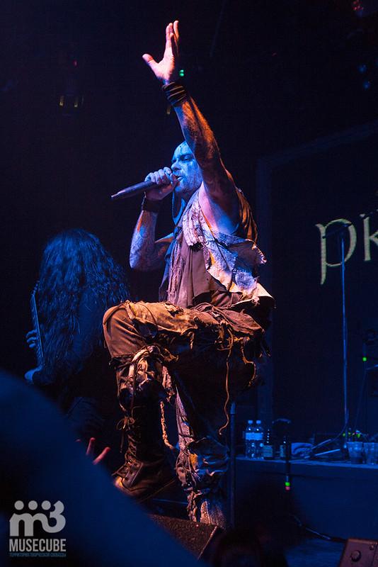 primordial-16