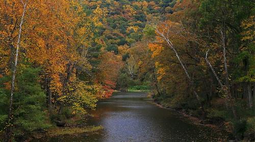 autumn fall tourism nature water canon river landscape eos fallcolors fallfoliage westvirginia lostriver 6d mccauley