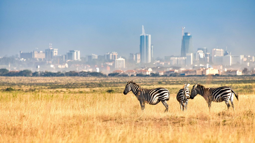 Image result for nairobi