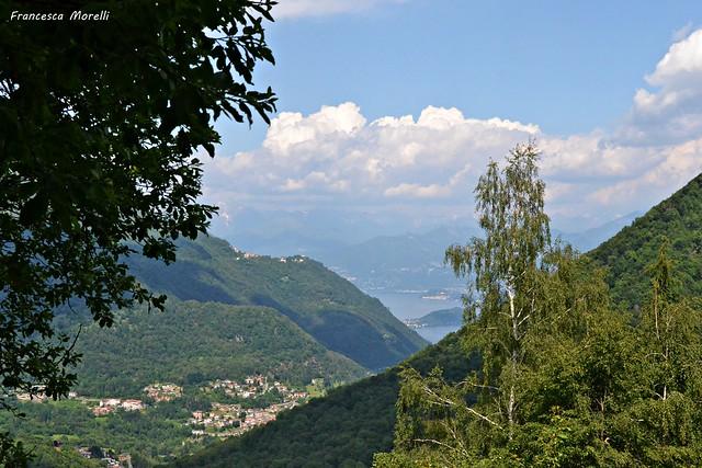 DSC_8655 Alpe di Cerano