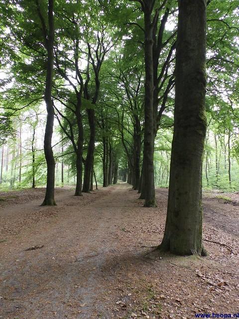 01-06-2013 Arnhem 32.05 Km (94)