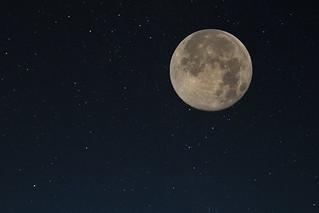 Super Moon | by davejdoe