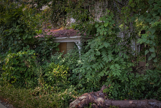 (Explored) The Reclamation: Almost Already Gone - Mount Airy, Maryland - August 31, 2014