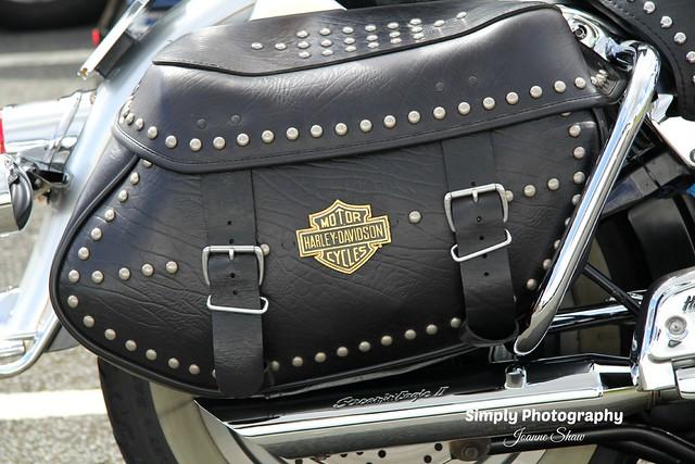 IMG_2746EN Harley