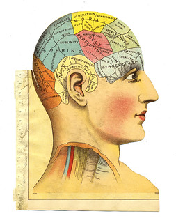 Phrenology head from The Household Physician, 1905 | by crackdog