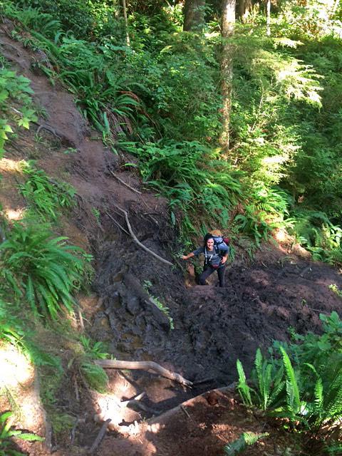 Hiker on the Juan de Fuca Marine Trail, between Chin Beach and Sombrio Beach, in Juan de Fuca Park on Vancouver Island, British Columbia