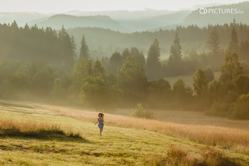 wood portrait woman sun nature girl field pine forest sunrise canon eos hope country young meadow sunny run skirt romania barefoot f2 rise magyar ariadne 135mm hungarian 6d demography portré harghita hargita harghitacounty odpictures odpictureshu