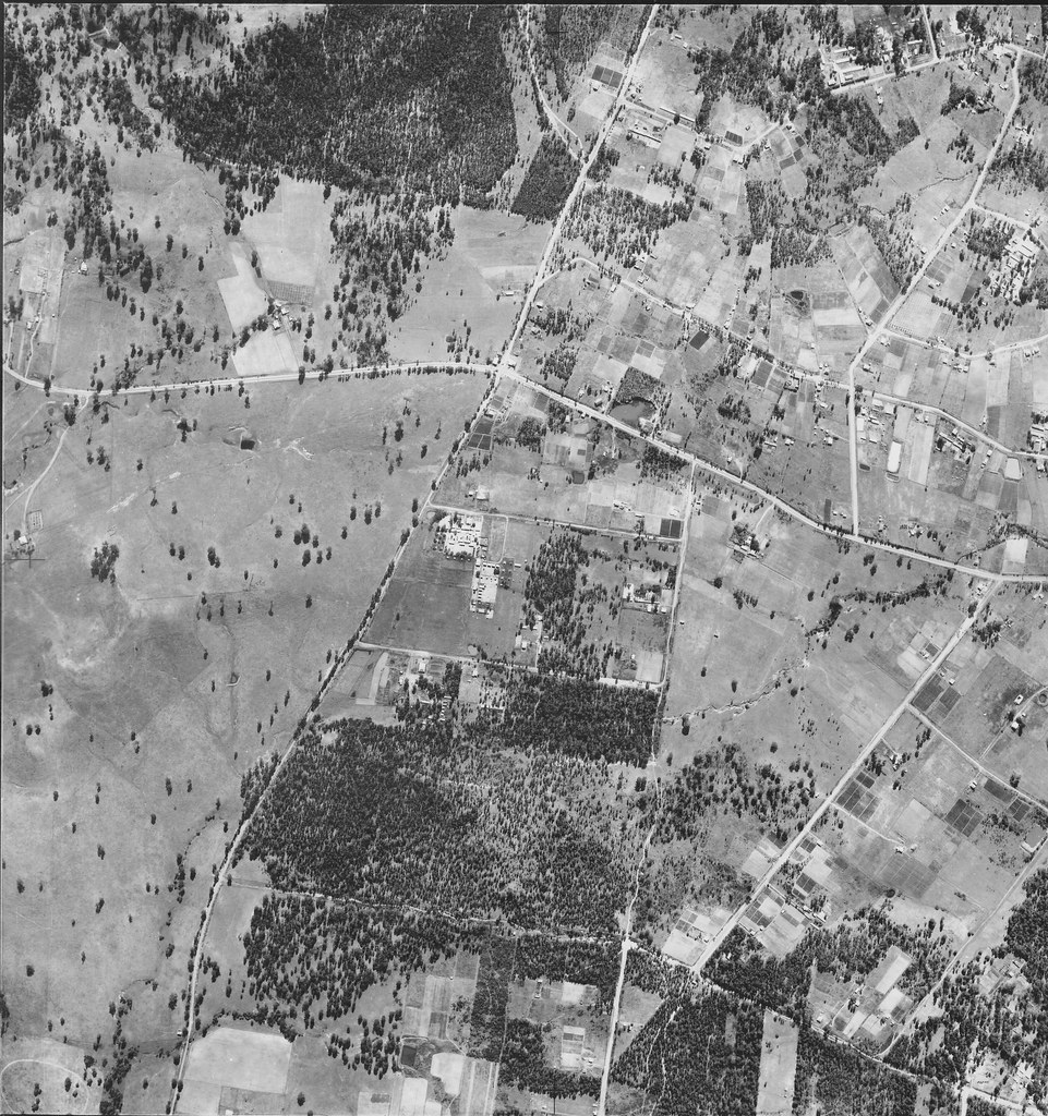 Abbotsbury, Bonnyrigg Heights, Edensor Park & Bonnyrigg 1951 - Sydney  aerial photo