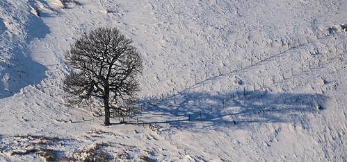 uk shadow sky cloud mountain snow tree field wales canon landscape eos countryside village britain hill cymru cardiff explore caerdydd 5d agriculture hillside gwent canoneos5d explored wentloog stevegarrington