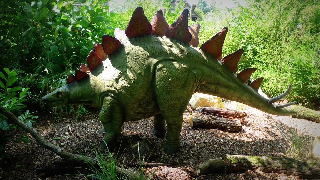 Stegosaurus | Henry Burrows | Flickr