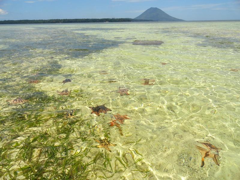 Pulau Siladen (Siladen Island), North Sulawesi,