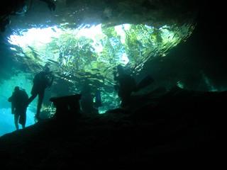 Cavern dive / 洞窟ダイブ