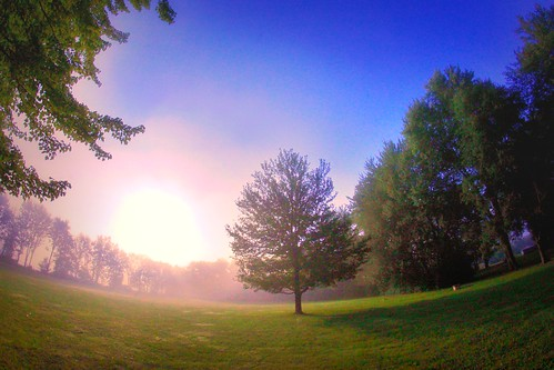 iphoneedit snapseed green field 2014 sunrise rokinon app grass mist skies sun trees fog light rural flare peaceful beautiful dslr handyphoto sky jamiesmed lens prime geotagged geotag fixed manual focus wide angle landscape summer cincinnati september fisheye ohio midwest canon eos 500d t1i rebel photography clintoncounty park queencity