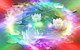 Rainbow Lotus | by maf04