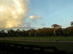 Angkor Thom - 06