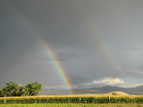 rain clouds rural rainbow cornfield colorado day monsoon agriculture montrosecolorado