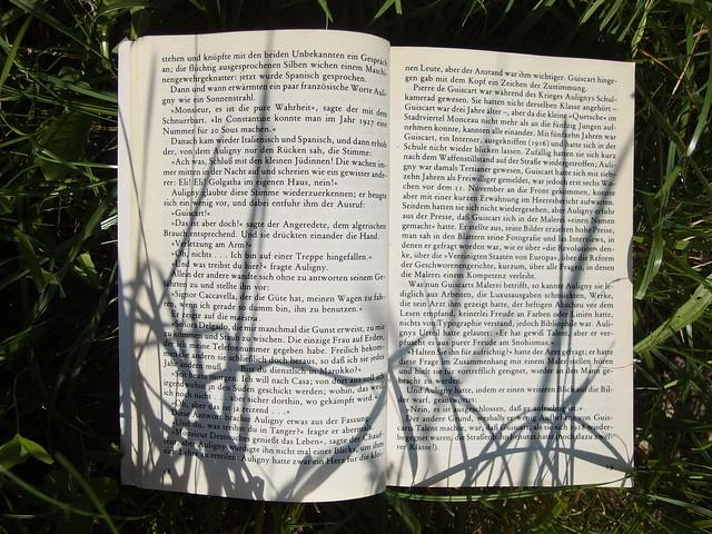 Printed Book Page Buch Buchseite Bücher Books Literatur (c)