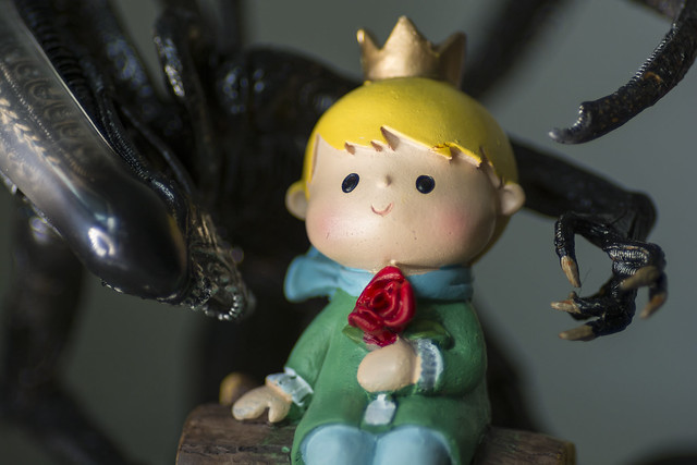 Perfect little prince for my Queen...