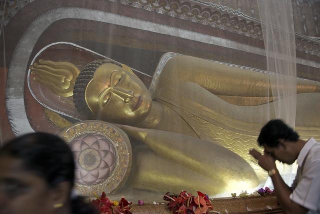 SL011 Kelaniya Raja Maha Vihara - Sri Lanka