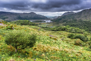 Ladies view, Derrycunihy, co. Kerry, Ireland | by Giuseppe Milo (www.pixael.com)