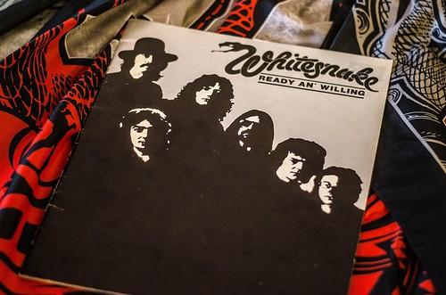 Whitesnake (5)