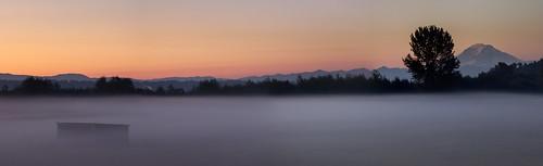 morning mountain fog sunrise washington valley mtrainier pnw