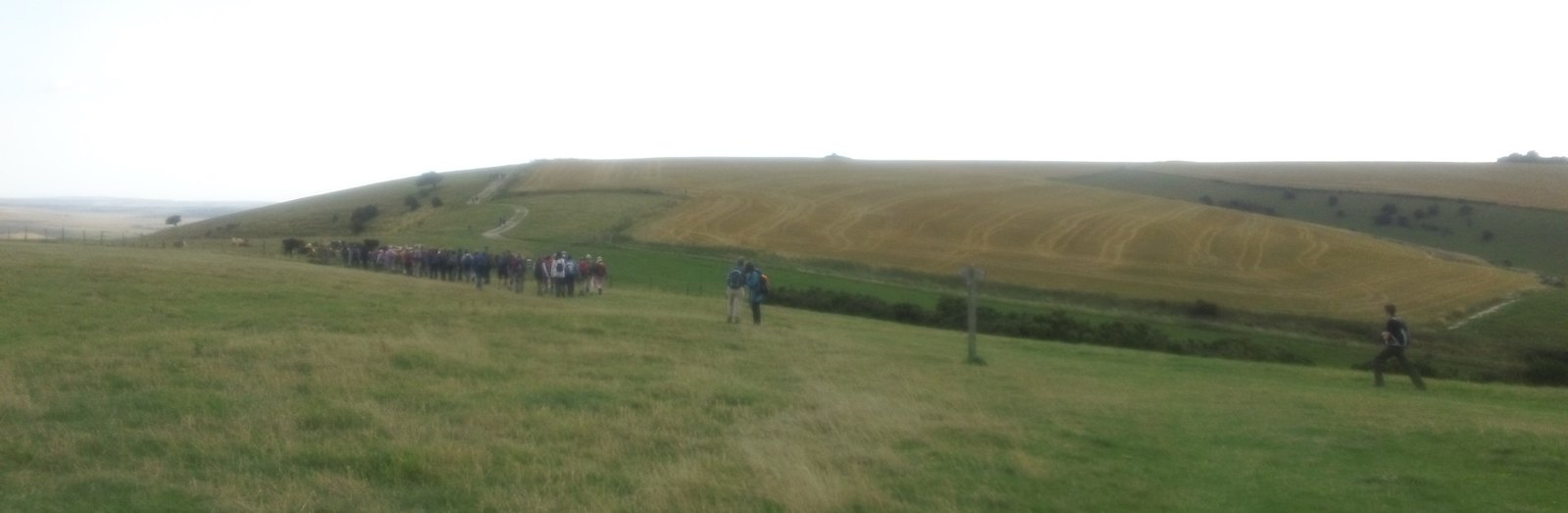 Along the South Downs Way: Saturday Walkers meet South Bank Ramblers