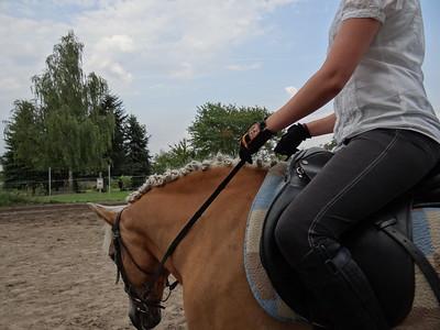 Das Leben auf dem Pferde und Reiterhof mit Lust und froh geniessen 1625