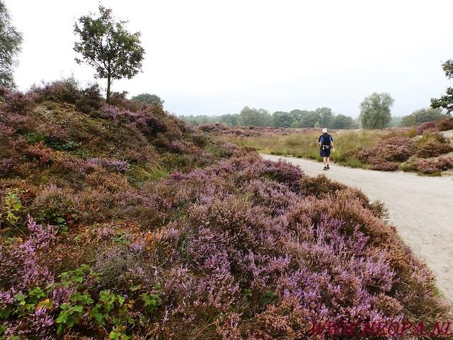Baarn                13-09-2014        40 Km   (33)
