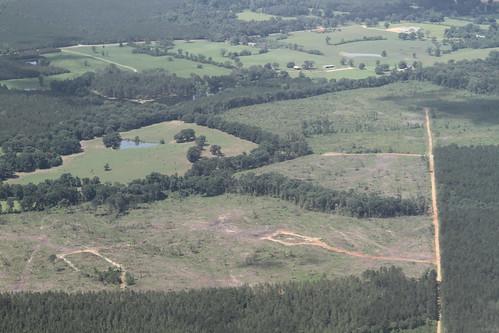 louisiana northshore wetlands frack scenicriver southwings
