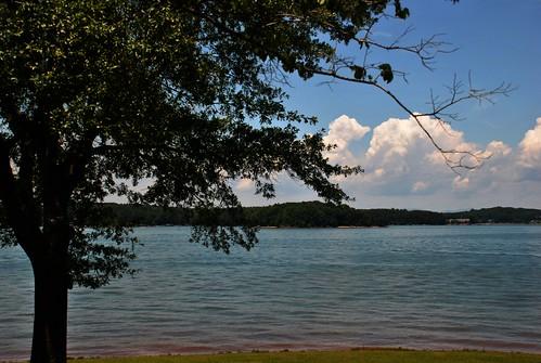 south carolina southcarolina sc oconee lake keowee clouds cumulus cumuluscloud cumulusclouds waterfront lakefront tree southcove park southcovepark cove lakekeowee usa keoweelake southcovecountypark