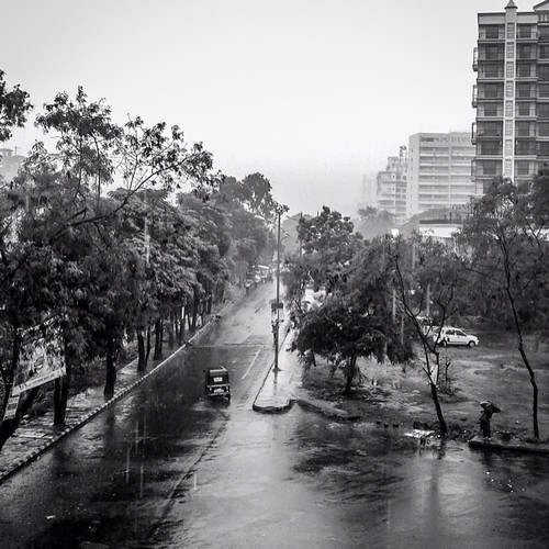 trees blackandwhite monochrome square landscape noir squareformat greenery lush rickshaw mumbai bnw navimumbai iphoneography instagramapp uploaded:by=instagram foursquare:venue=50be2b60e4b0e286ce869e4c