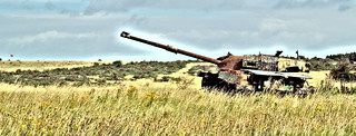 Imber Artillery Range, Wiltshire, Aug 2014 (effects) | by roger.w800