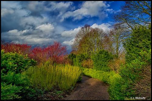 plants nature gardens landscape nationaltrust cambridgeshire priory countryhouse wintergardens lode jacobean angelseyabbey