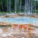 Square Spring (Chain Lakes Group, Upper Geyser Basin, Yellowstone Hotspot Volcano, nw Wyoming, USA)