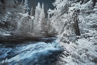 raging waters in christmasland | by greg westfall.